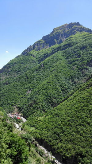 Iran♥ Shomal Day Mountain Nature Beauty In Nature Outdoors Wide Angle No People Trees Green Color Jungle Tree Mountain Roud Mountain Road Jungle Road