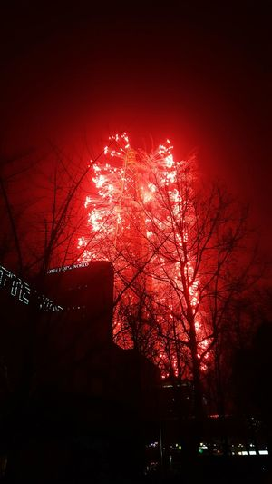 City Of Seoul Lotteworld Tower Opening Events fireworks display