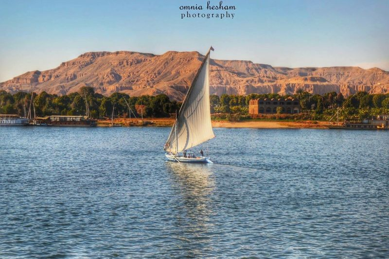 The view from nile cruise