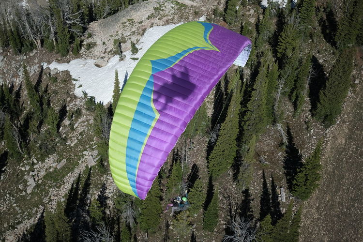 Paragliding in Jackson Hole, Wyoming. Tree Plant Nature Day Water Beauty In Nature Parachute Adventure Outdoors Forest Sport No People Growth Non-urban Scene Multi Colored Paragliding Scenics - Nature Pink Color Extreme Sports Paragliding