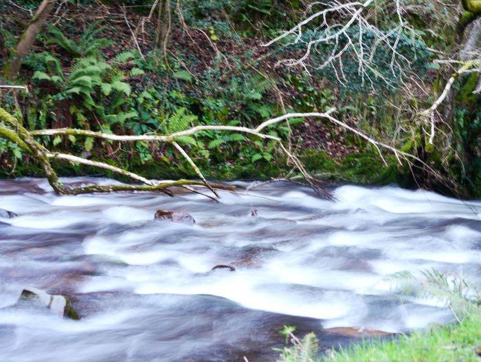 Taken with LUMIX DMc-G3 Taking Photos Nature First Eyeem Photo River Longshutter