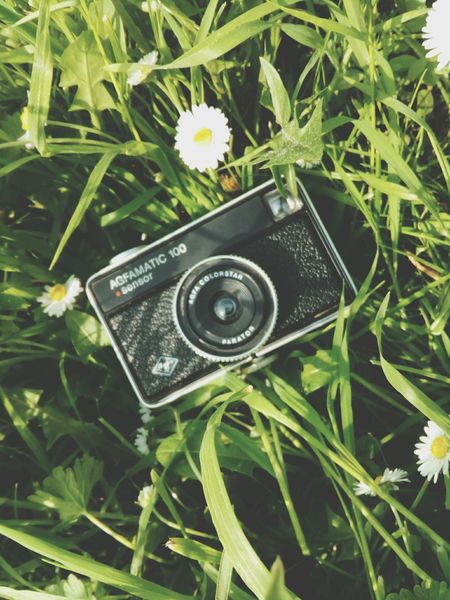 my new baby Vintage Camera Lomography Nature Details