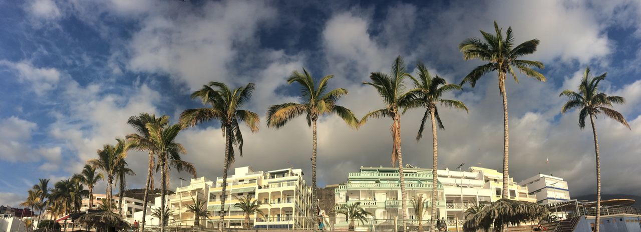 Palm trees and hotels against cloudy sky