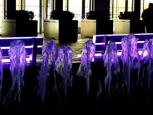 Waterfall of Colours Lumiere London London Garden Park Waterfalls Waterfeature Fountain Purple No People Multi Colored Outdoors Day Flower Close-up