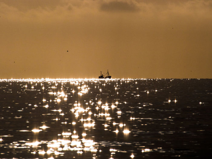 Golden Liquid 43 Golden Moments Beauty In Nature Cloud - Sky Coast Coastline Evening Fisher Gold Idyllic North Sea Outdoors Reflection Reflection_collection Rippled Sankt Peter-Ording Scenics Sky Sun Sun Reflection Sunset Tranquil Scene Trawler Water