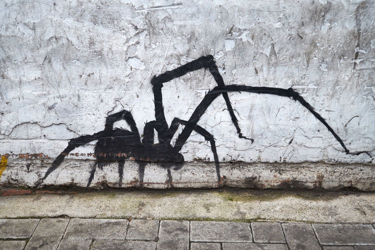 Graffiti Spider Architecture Black Building Exterior Built Structure Close-up Day Grafffiti Art No People Outdoors Wall - Building Feature