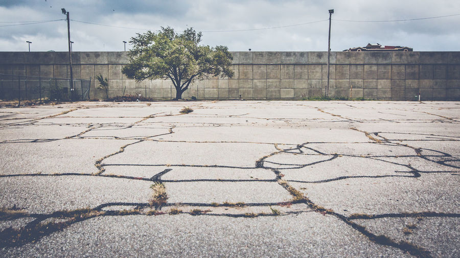 Kansas Wichita Architecture Building Exterior Built Structure City Cloud - Sky Nature No People Outdoors Plant Street Streetphotography Tree Wall - Building Feature The Street Photographer - 2018 EyeEm Awards The Street Photographer - 2018 EyeEm Awards
