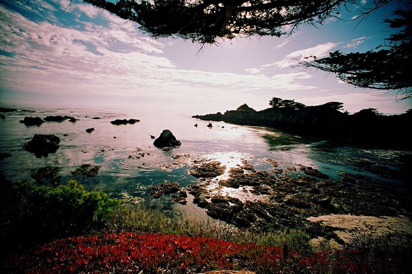 Koduckgirl Carmel Highlands Rock - Object Scenics Horizon Over Water Landscape Sea Beauty In Nature No People Film