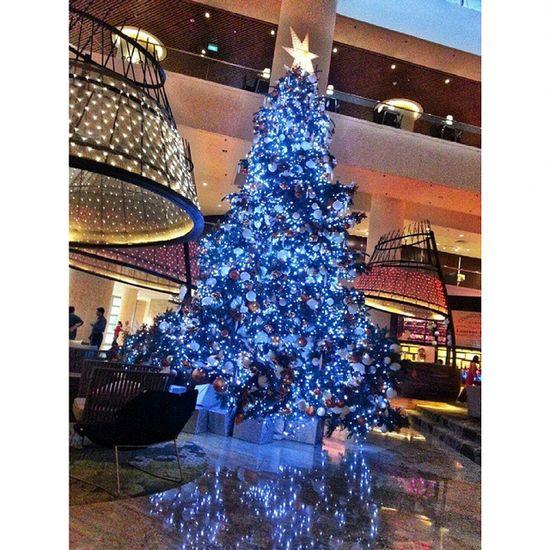 Tis' the season to be jolly. Ye hotels' very own X'mas tree @panpacificsingapore Blue theme for tis' festive season. Happy holidays! Xmas Festive Christmastree Festiveseason seasonsgreeting instapic ig hotelier hotel instamood happyholidays