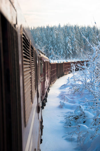 View Of Train By Trees During Winter