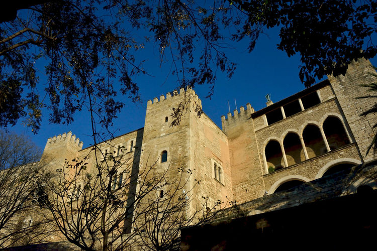 view of Royal Palace in Palma di Maiorca in the branches Architecture Outdoors Building Exterior Low Angle View No People Royal Palace Palma De Mallorca Low Angle View History Highlights Travel Destinations Spanish Architecture Tree Branch Clear Sky The Past Built Structure