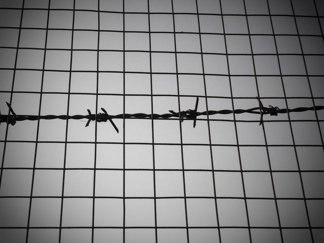 Freedom is not just a concept Barbed Wire Blockade Blocked Closed Concept Confinement Freedom Mesh Wire Fence No People Obstacle Imprisoned Imprisonment Conceptual Chainlink Fence