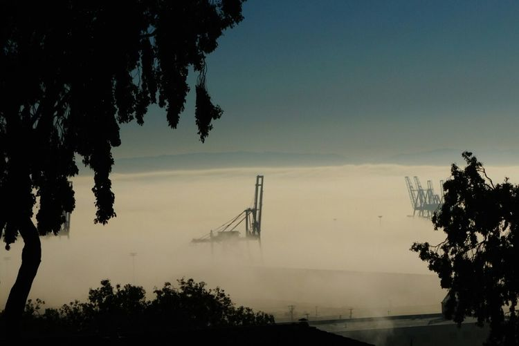Fog so thick you can stick a fork in it Fog Bayarea Sanfrancisco Potrero Hill Karl