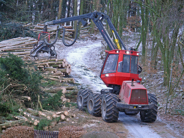 Arbeitskopf Fichtenwald Harvester Holzvollernter Industry Kranvollernter Machinery MB Trac 1600 Turbo Nature No People Outdoors Red Tree Tree Wald Waldmaschine Waldvollernter
