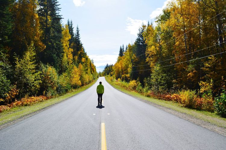 Fall Wanderlust Hiking Beauty In Nature Kanada Canada Wells Gray Provincial Park Yellow Tree Full Length Road Men Rear View Walking Sky Empty Road Mountain Road Road Marking The Way Forward Asphalt Country Road Yellow Line Treelined A New Beginning It's About The Journey