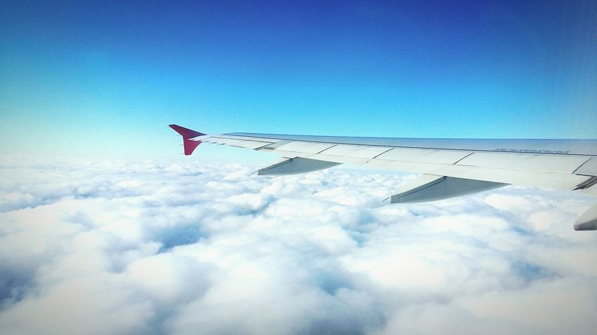 Cloudy travel. Airplane Cloud - Sky Flying Sky Travel Transportation Blue Journey Air Vehicle Aircraft Wing Aerospace Industry Airplane Wing Vapor Trail Heaven Blue Sky Memories Aerial View
