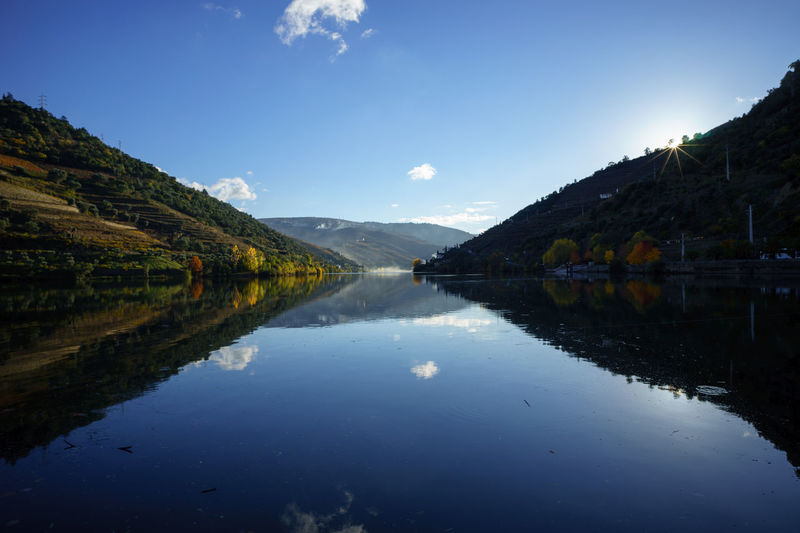 Blick auf den Douro (view onto the Douro river), Pinhão, Portugal Autumn Autumn Colors Douro  Douro River Portugal Portugal Beauty In Nature Day Douro Valley Mountain Nature No People Outdoors Pinhão Reflection River Scenics Sunset Water Perspectives On Nature