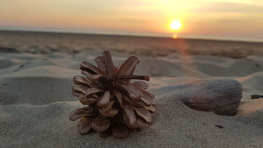 Sunset Beach Nature Beauty In Nature No People Water Day Formby Beach Samsung Galaxy S 8