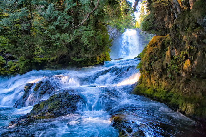 Beauty In Nature Charming Day Environment Flowing Water Freshness Landscape Motion Natural Disaster Nature No People Outdoors River Rock - Object Scenics Social Issues Stream - Flowing Water Tranquility Travel Destinations Tree Water Waterfall