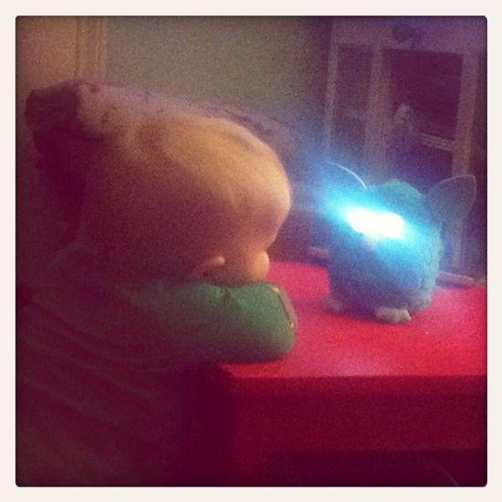 Chatting Furbish