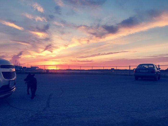 Sunsets + my