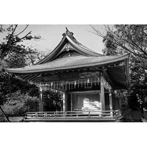 Japan Temple Blackandwhite