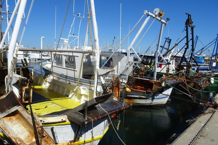 Peche Pêcheur Pêcheur 👣🐟 Mer Blue Bateau ❤️