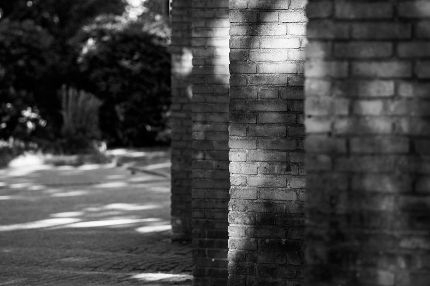 Brick Wall Architecture Blackandwhite Brick Brick Wall Building Exterior Built Structure City Close-up Day Focus On Foreground Monochrome Nature No People Outdoors Pattern Plant Selective Focus Sunlight Textured  Tree Wall Wall - Building Feature The Architect - 2018 EyeEm Awards