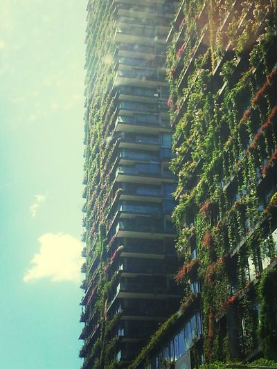 Nature Taking Over On Purpose Architecture_collection Sydney, Australia