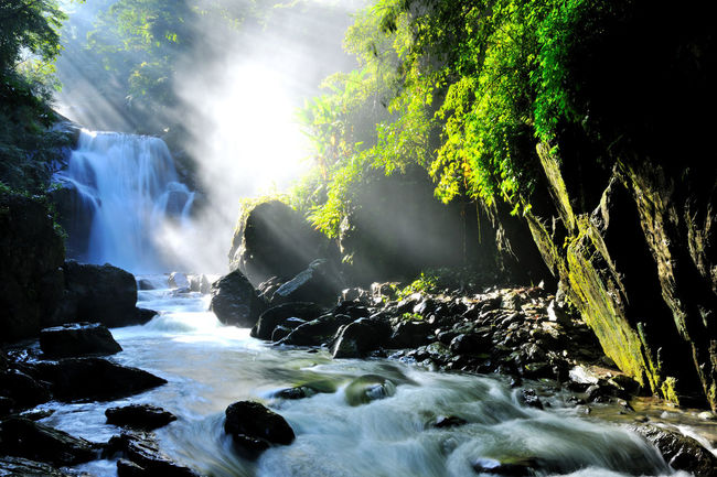 With plenty of natural negative ions, beautiful scenery and tranquil waterfalls, it is Wulai in Taiwan's new Taipei Cool Fresh Air Natural Negative Ions Wulai Beauty In Nature Day Forest Long Exposure Motion Nature No People Outdoors Power In Nature River Rock - Object Scenics Tree Water Waterfall