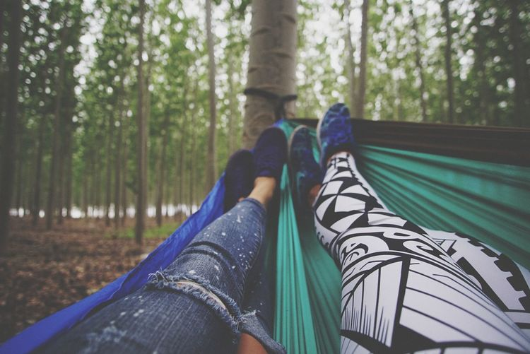 Low section of women relaxing in hammock in forest