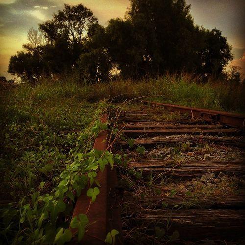 Rsa_rurex Igersneworleans FotoFanatics Rsa_rural_railroads Rustlordtrio