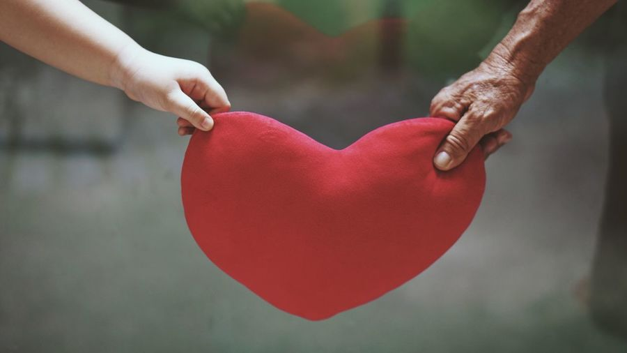 Cropped Hands Of Grandchild And Grandparent Holding Heart Shape Pillow