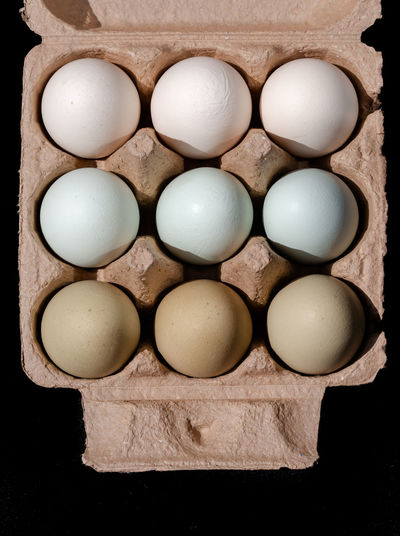 Green tones making gradient eggs in cardboard square container on solid black background view from top Easter Gradient Green Happy Easter! Memories Square Arrangement Black Background Cartoon Container Directly Above Egg Egg Carton Food For Sale Freshness Healthy Eating In A Row Nine Order Raw Food Side By Side Still Life Three By Three Wellbeing