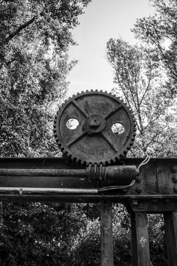 Angry Zahnrad Black And White Close-up Cog Day Gear Gear Wheel Low Angle View Nature No People Outdoors Sad Sky Technology Tree