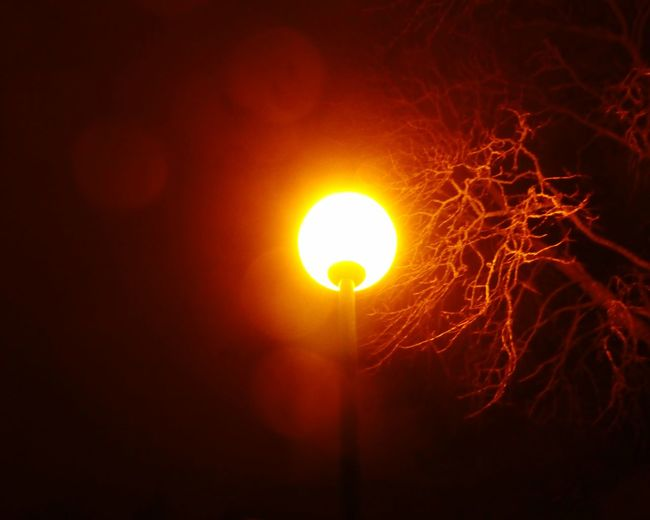 When there is only one light... Vivid Colours  Outdoors Photograpghy  Natural Beauty Outdoors Artistic Artistic Eye Cool Effect Lamppost Darkness And Light Darkness And Beauty Darkness To Light Light And Shadow Light And Dark Night Lights Night Photography Night Shot Night Sky