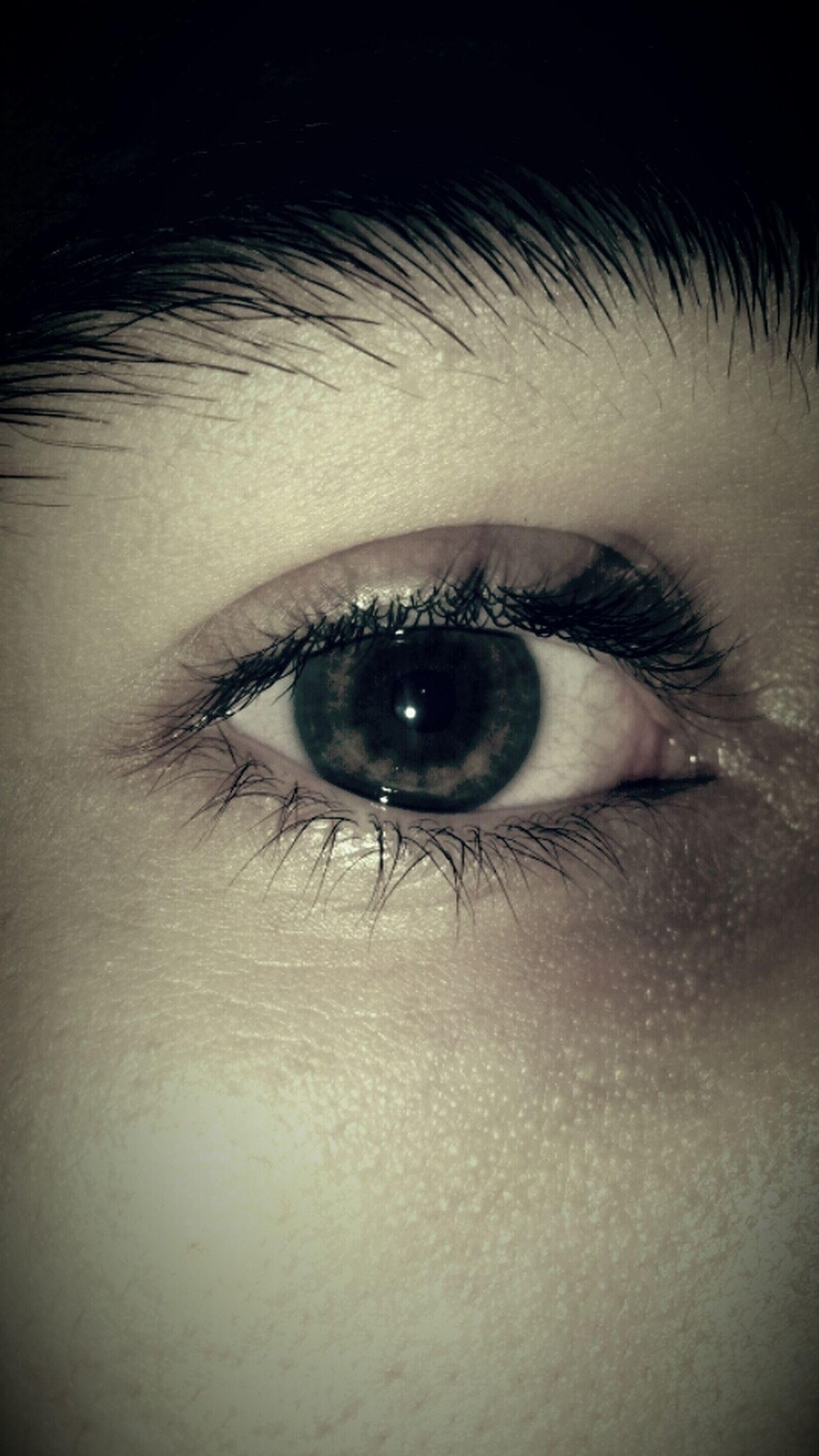 human eye, close-up, eyelash, eyesight, sensory perception, part of, extreme close-up, full frame, human skin, indoors, iris - eye, extreme close up, backgrounds, unrecognizable person, portrait, looking at camera, eyeball
