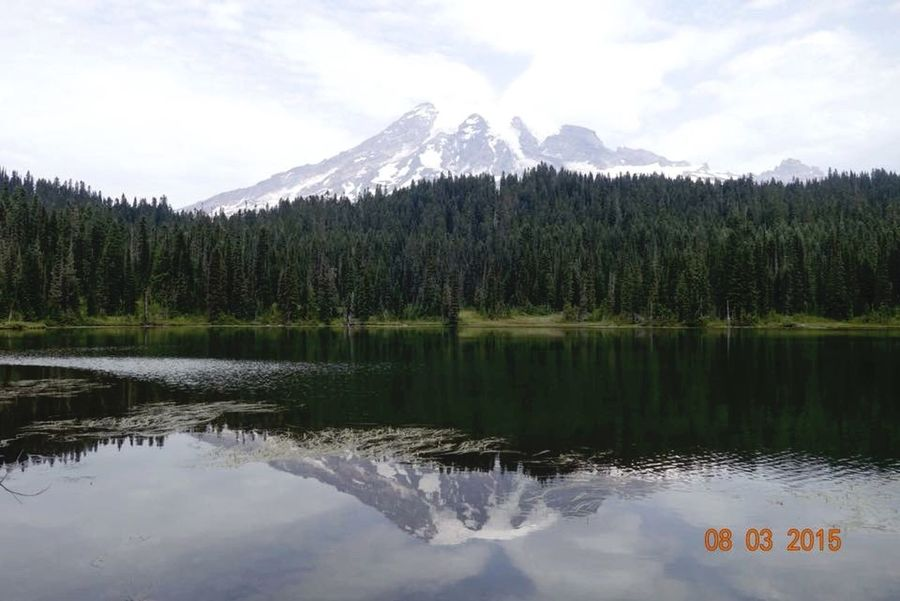 Mt Rainier Great Views