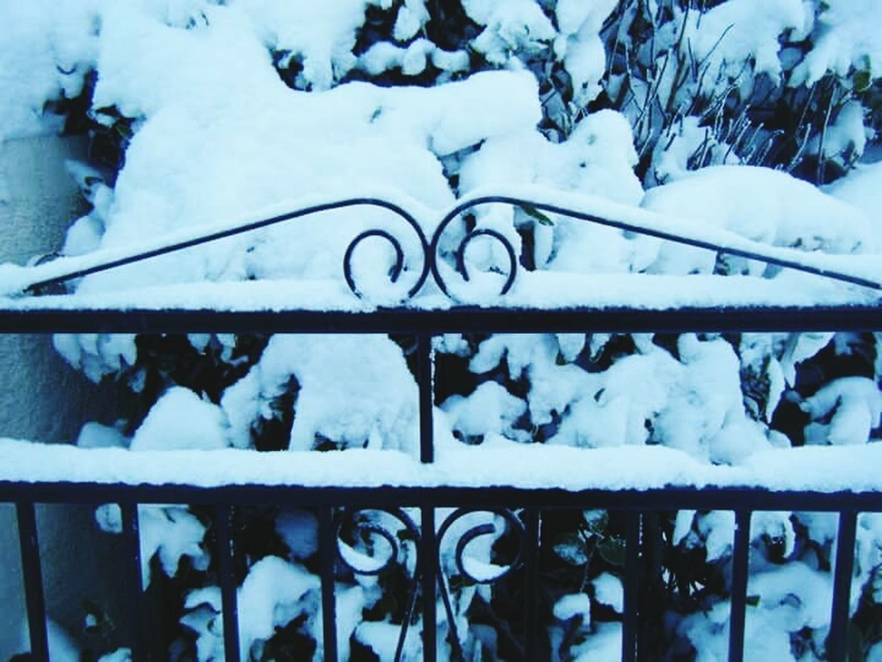 winter, snow, cold temperature, weather, frozen, railing, no people, nature, day, ice, outdoors, snowing, close-up