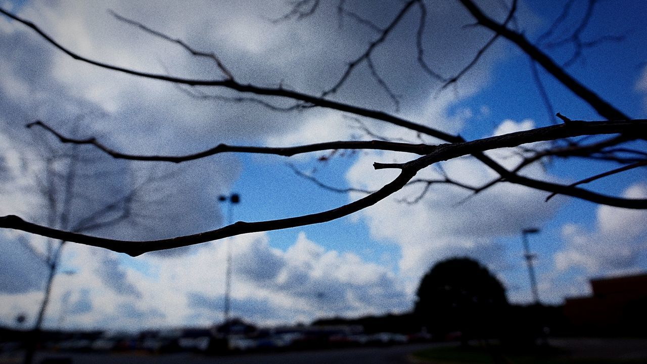 sky, focus on foreground, no people, tree, nature, plant, bare tree, branch, silhouette, close-up, cloud - sky, day, outdoors, architecture, built structure, beauty in nature, low angle view, dusk, building exterior, raindrop