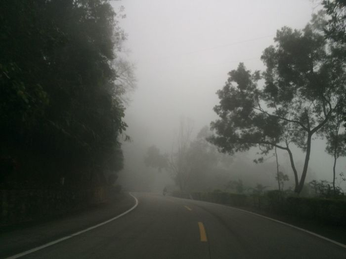 Tree The Way Forward Road Nature Tranquility Fog Transportation Tranquil Scene Landscape No People Outdoors Day Scenics Beauty In Nature Countryside Sky Welcome To Black EyeEmNewHere