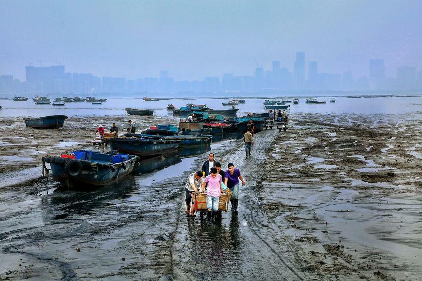 魚穫 - 上岸交收 Men at work Men At Work  Fisherman Lau Fao Shan Yuen Long Hong Kong