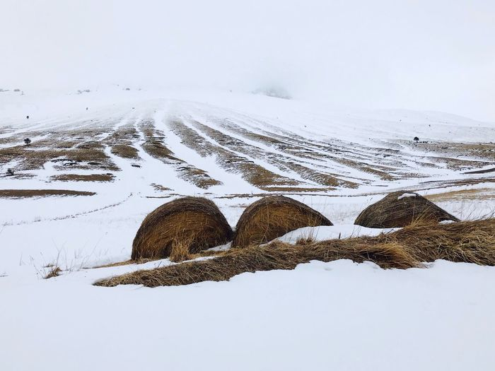 Hay Bale Agriculture Winter Snow Cold Temperature Sky Tranquil Scene Tranquility Beauty In Nature Mountain Snowcapped Mountain Fog