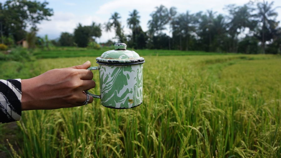 A cup of tea in the rice field in Yogyakarta, Indonesia, January 2019 My Best Photo Rice Field Green Color Tea Cup Tea Cup Finger Farmer Outdoors Food And Drink Focus On Foreground Men Grass One Person Holding Agriculture Nature Rural Scene Day Land Landscape Field Hand Plant Human Body Part Human Hand