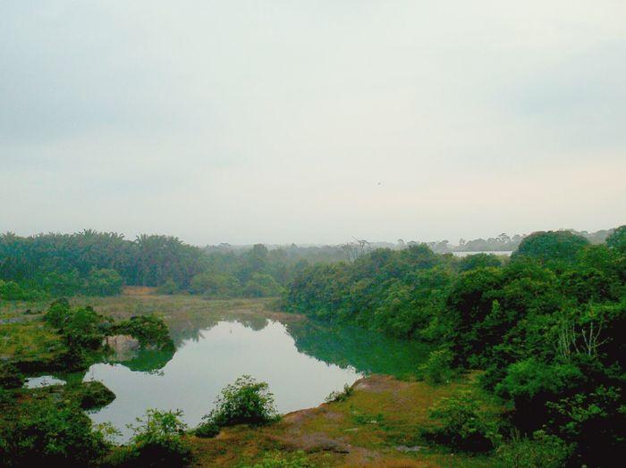 #morning #tasek #lawa Tree Reflection Nature Water Sky Lake Outdoors