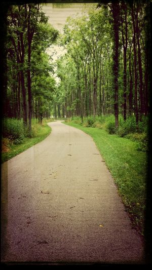 """Just like""""the long and winding road""""... Hanging Out"""