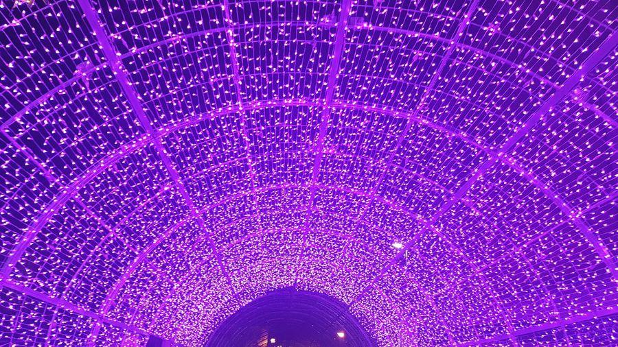 Close-up of illuminated purple lights