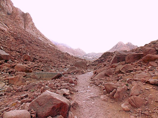 Egypt Saint Catherine Landscape Travel Destinations Desert Nature Mountain Beauty In Nature Barren Arid Climate Hiking Scenics Clear Sky Ravine Outdoors No People Day