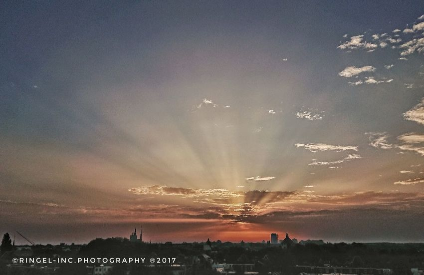 Skyline 's-Hertogenbosch sunrise . Sunset Sky Scenics No People Beauty In Nature Nature Animals In The Wild Landscape Outdoors Animal Themes Astronomy Day Galaxy Photography Fooling Around ^_^ Hello World XperiaXZ1