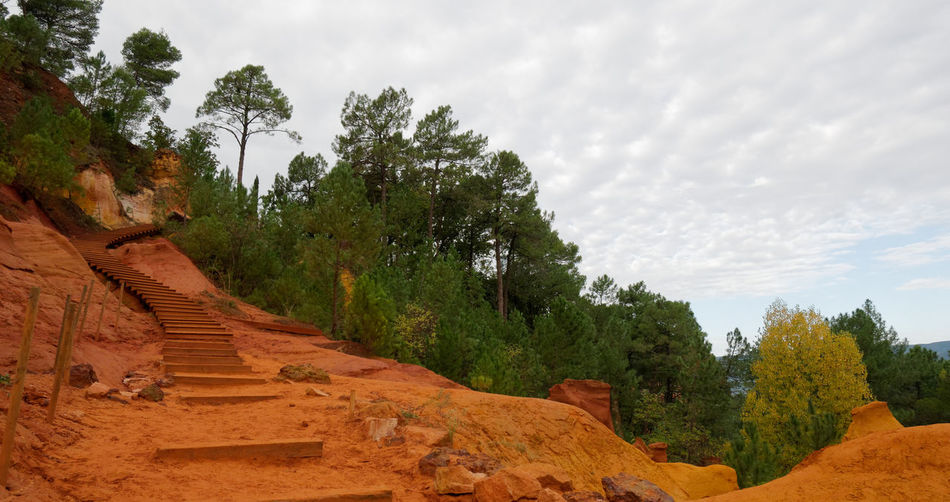 Provence France Ocher Ocher Color Outdoors Cloud - Sky Sky Sky And Clouds Tree Forest Beauty In Nature Cliff Nature Nature_collection Nature Photography Stairs Plant Scenics - Nature Tranquil Scene Tranquility Growth No People Land Landscape Day Non-urban Scene Autumn Environment Rock Solid Change